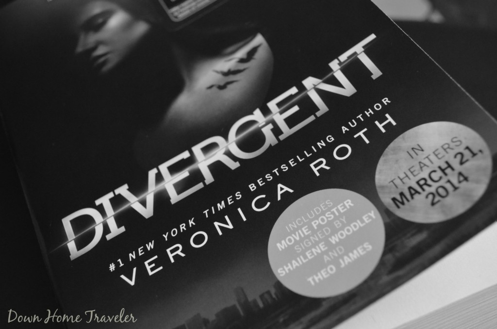 Catch The Moment 365, Book, Book Club, Divergent