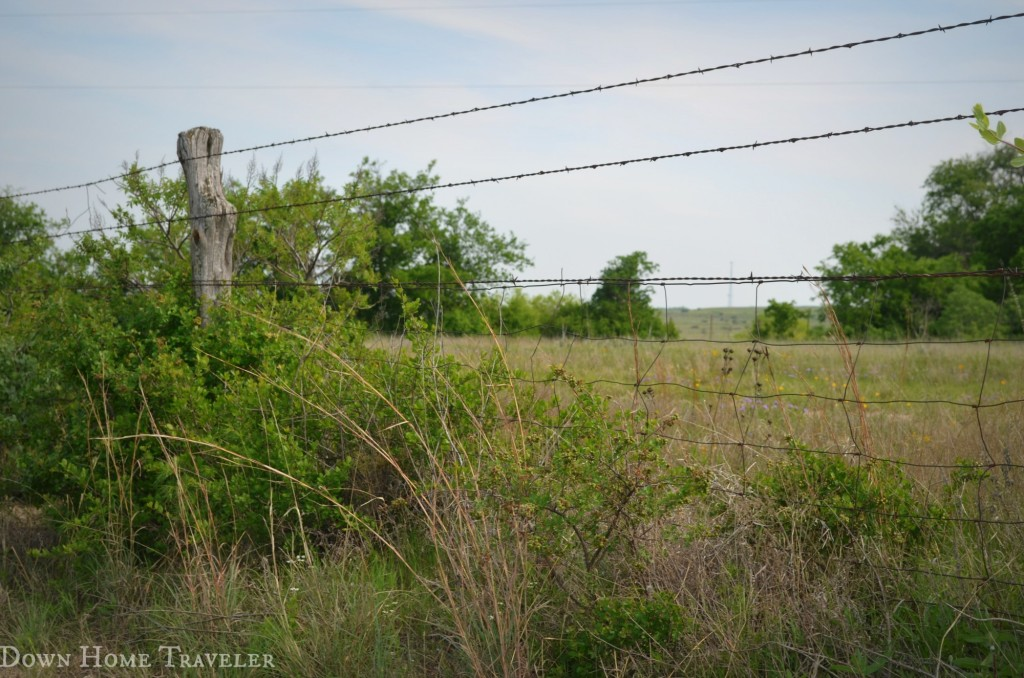 Texas, Catch the Moment, Fence, Country