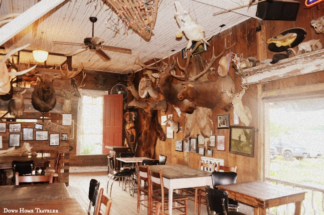 Dancehall, Texas, Historic Places, Bar, Bluff-Dale, Small-Texas-Towns, Taxidermy