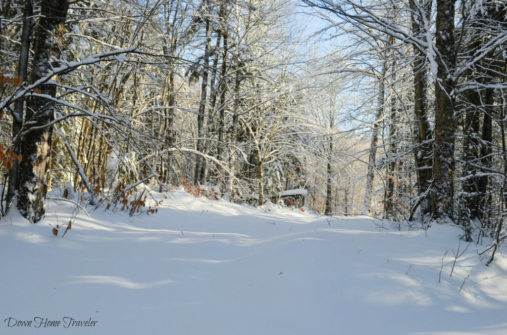 Vermont, Hike, Winter, Snow, Forest, Snow Covered Trees, Richford Vermont, Green Mountains