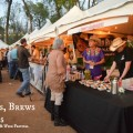 Burgers Brews and Blues, Fort Worth Food and Wine Festival, Fort Worth Texas,