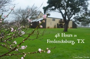 Fredericksburg, Texas, VisitFredTX, Wine Trail, Hill Country, Fredericksburg To Do, Becker Vineyards